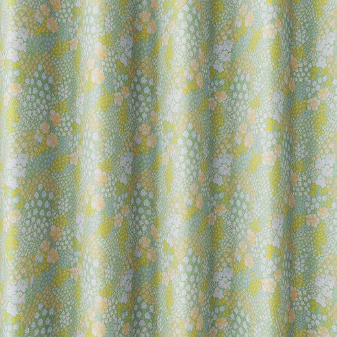 V1322 オハナバタケ カラー画像2