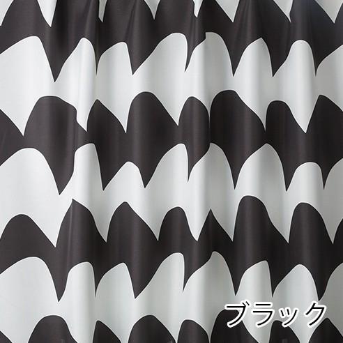V1276 サザナミ カラー画像1